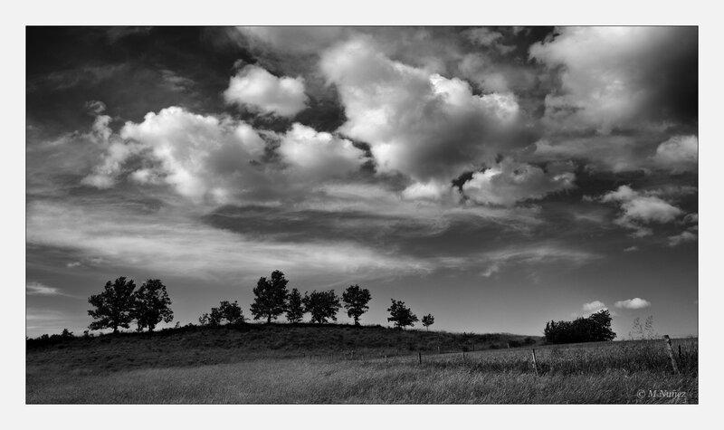 photo, Instinct-photo, tintin09, noir et blanc, paysage, colline